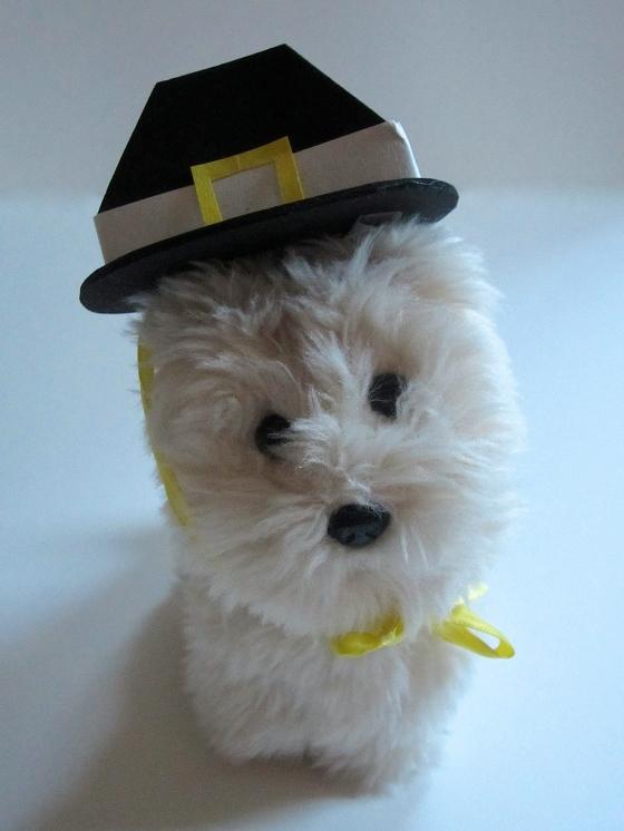 Pilgrim-Hat-2