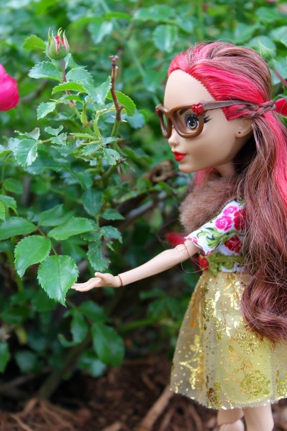 Rosalind 4